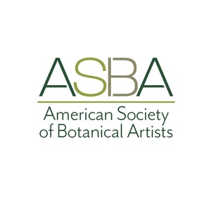 American Society of Botanical Artists headshot