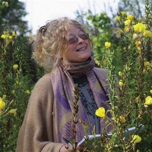 Elaine Perry headshot
