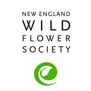 New England Wild Flower Society headshot