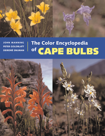 Book Cover for: The Color Encyclopedia of Cape Bulbs