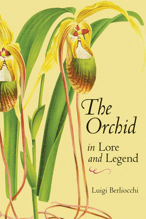 Book Cover for: The Orchid in Lore and Legend