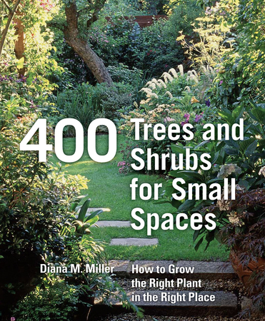 Book Cover for: 400 Trees and Shrubs for Small Spaces