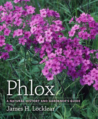 Book Cover for: Phlox