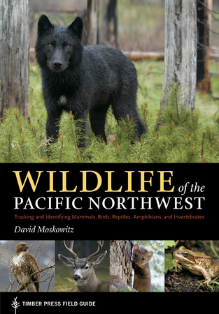 Book Cover for: Wildlife of the Pacific Northwest