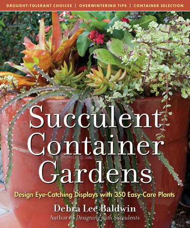 Book Cover for: Succulent Container Gardens