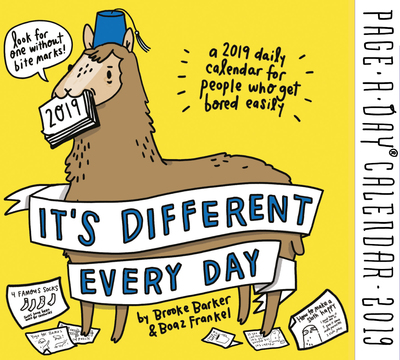 Its Different Every Day PageADay Calendar 2019