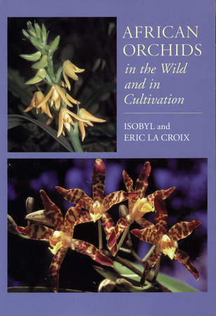 Book Cover for: African Orchids in the Wild and in Cultivation