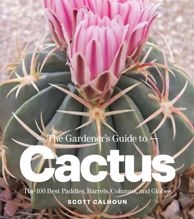 Book Cover for: The Gardener's Guide to Cactus