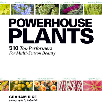 Book Cover for: Powerhouse Plants