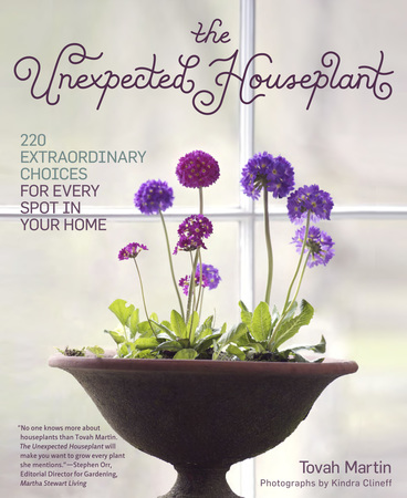 Book Cover for: The Unexpected Houseplant