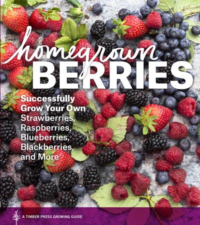 Book Cover for: Homegrown Berries