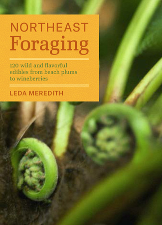 Book Cover for: Northeast Foraging