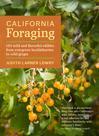 Book Cover for: California Foraging
