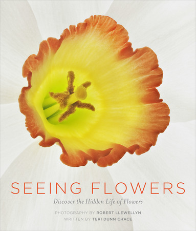 Book Cover for: Seeing Flowers