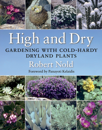 Book Cover for: High and Dry