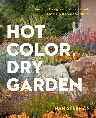 Book Cover for: Hot Color, Dry Garden