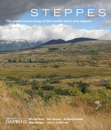 Book Cover for: Steppes
