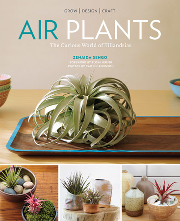Book Cover for: Air Plants