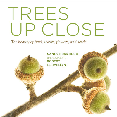 Book Cover for: Trees Up Close