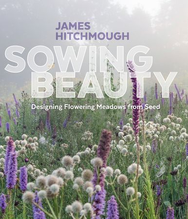 Book Cover for: Sowing Beauty
