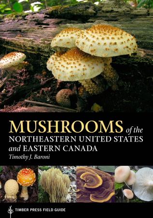 Book Cover for: Mushrooms of the Northeastern United States and Eastern Canada