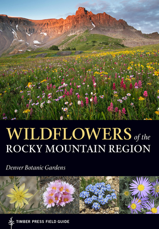 Book Cover for: Wildflowers of the Rocky Mountain Region