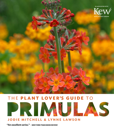Book Cover for: The Plant Lover's Guide to Primulas