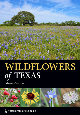 Book Cover for: Wildflowers of Texas