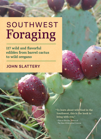 Book Cover for: Southwest Foraging