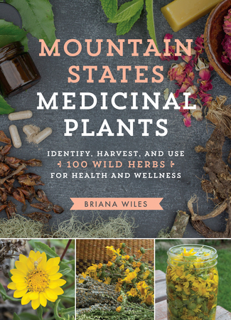 Book Cover for: Mountain States Medicinal Plants