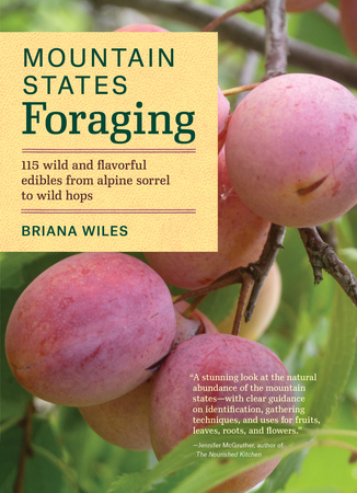 Book Cover for: Mountain States Foraging