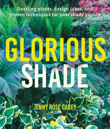 Book Cover for: Glorious Shade