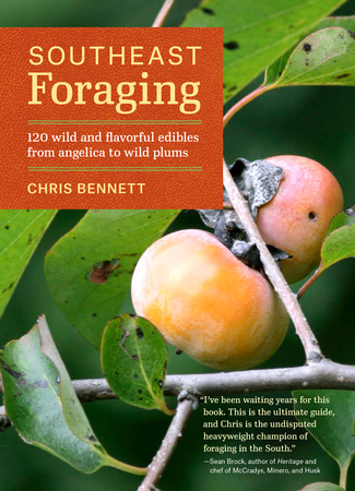 Book Cover for: Southeast Foraging