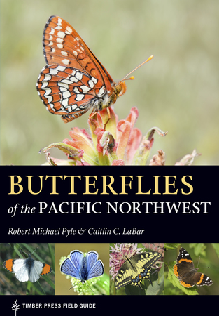 Book Cover for: Butterflies of the Pacific Northwest