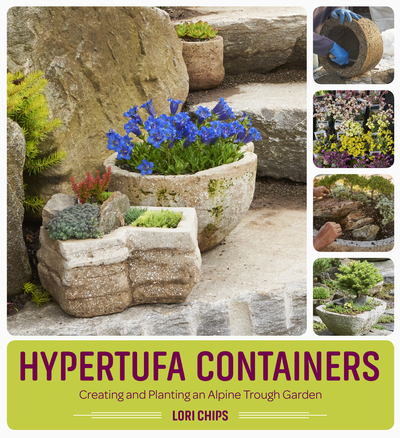 Book Cover for: Hypertufa Containers