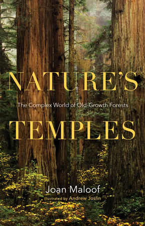 Book Cover for: Nature's Temples