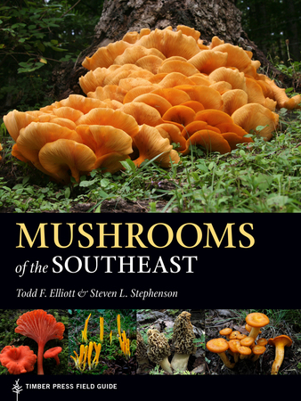 Book Cover for: Mushrooms of the Southeast