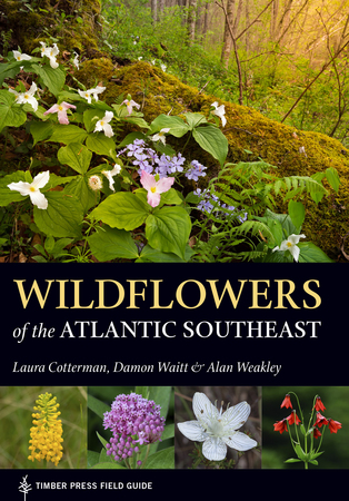 Book Cover for: Wildflowers of the Atlantic Southeast