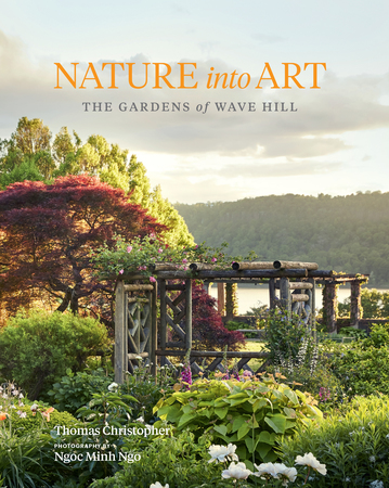 Book Cover for: Nature into Art