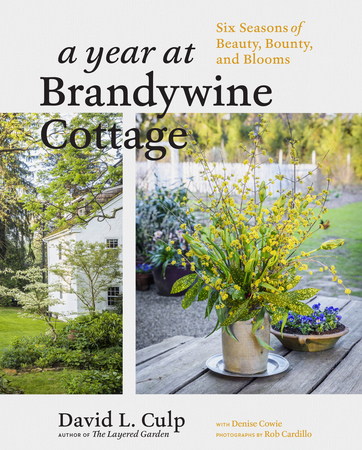 Book Cover for: A Year at Brandywine Cottage