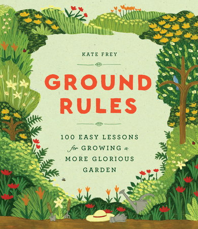 Book Cover for: Ground Rules
