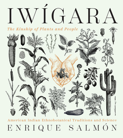 Book Cover for: Iwígara