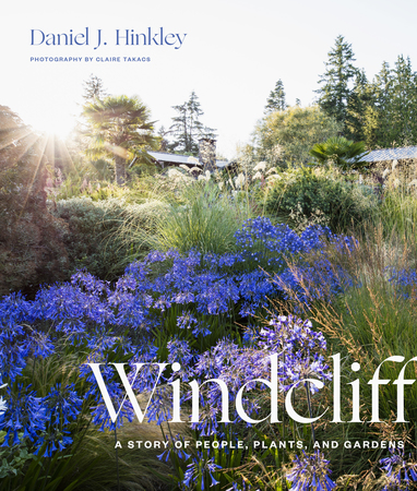 Book Cover for: Windcliff