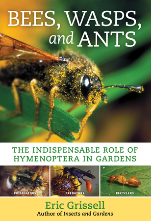 Book Cover for: Bees, Wasps, and Ants