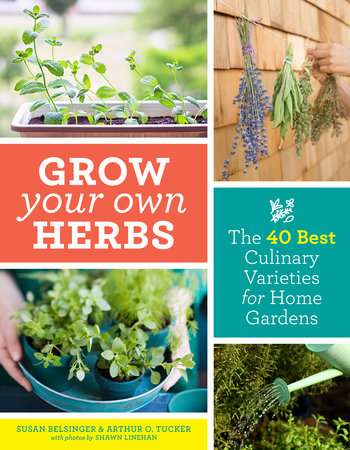 Book Cover for: Grow Your Own Herbs