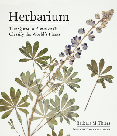 Book Cover for: Herbarium