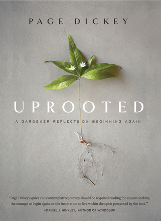 Book Cover for: Uprooted