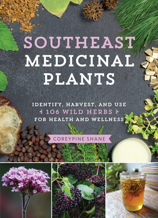 Book Cover for: Southeast Medicinal Plants
