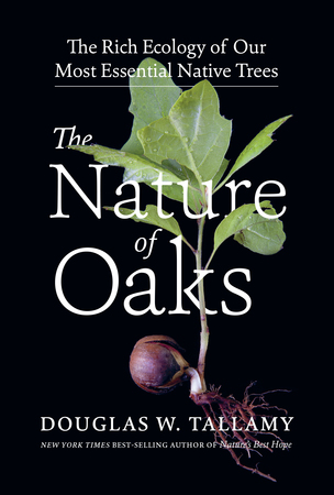 Book Cover for: The Nature of Oaks