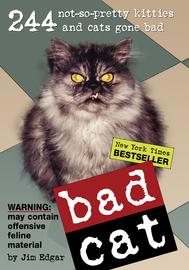 Bad Cat - cover